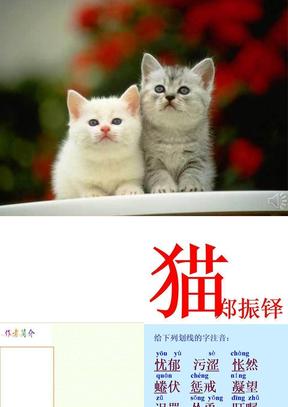 郑振铎《猫》.ppt