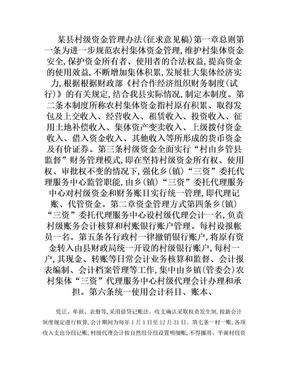 某县村级资金管理办法.doc