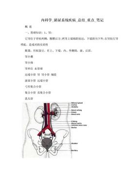 内科学_泌尿系统疾病_总结_重点_笔记.doc