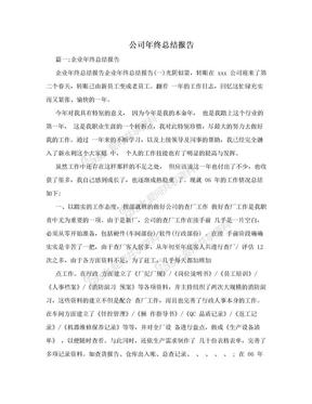 公司年终总结报告.doc