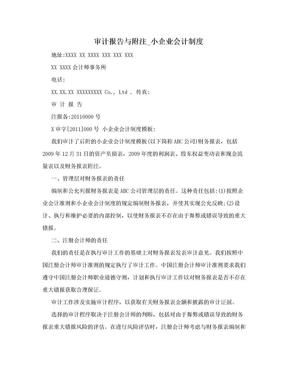 审计报告与附注_小企业会计制度.doc