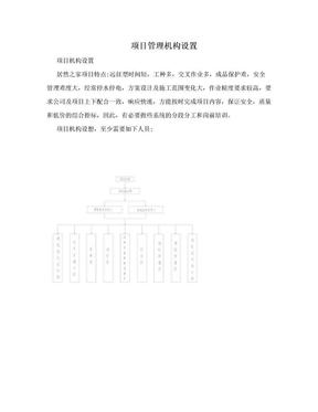 项目管理机构设置.doc