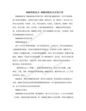 辣椒种植技术 辣椒种植技术详情介绍.doc