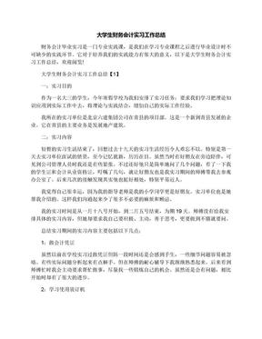 大学生财务会计实习工作总结.docx