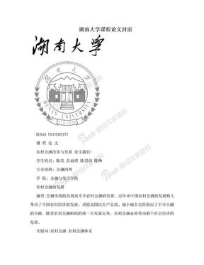湖南大学课程论文封面.doc