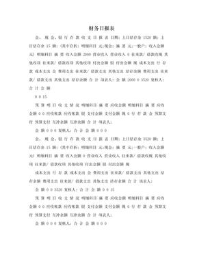 财务日报表.doc