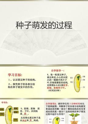 《种子萌发的过程》精品课件3.ppt