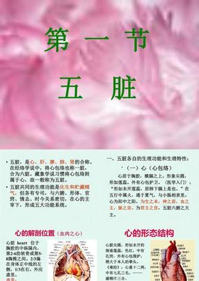 (中医基础共15个文件)-第二章藏象学说-脏象2.ppt