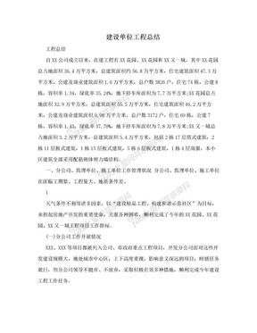 建设单位工程总结.doc
