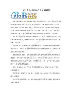 武汉市青山区房地产市场分析报告.doc