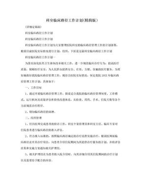 科室临床路径工作计划(精简版).doc