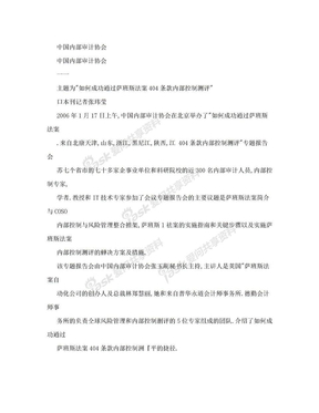 中国内部审计协会.doc