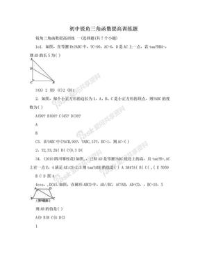初中锐角三角函数提高训练题.doc