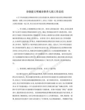 市创建文明城市督查七组工作总结.doc