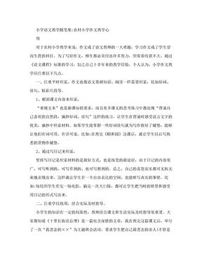 小学语文教学随笔集 农村小学作文教学心得.doc