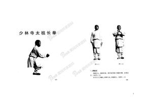 太祖长拳.doc