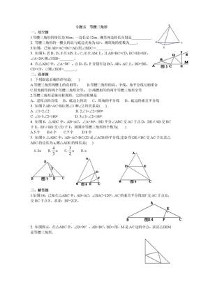 专题五 等腰三角形.doc