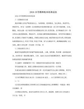 2016小学教师校本培训总结 .doc