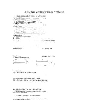 北师大版四年级数学下册认识方程练习题.doc