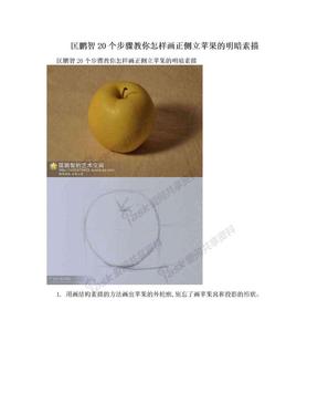 匡鹏智20个步骤教你怎样画正侧立苹果的明暗素描.doc