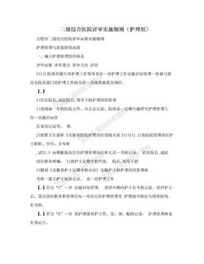 二级综合医院评审实施细则(护理组).doc