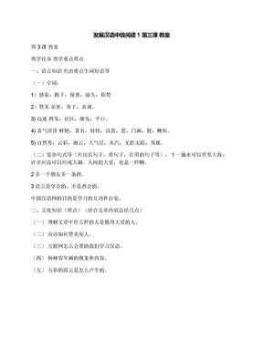 发展汉语中级阅读1第三课教案.docx