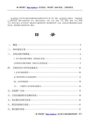 企业-建材-网站策划-方案--8U网络推广.doc
