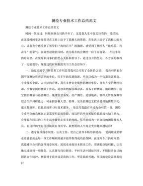 测绘专业技术工作总结范文.doc