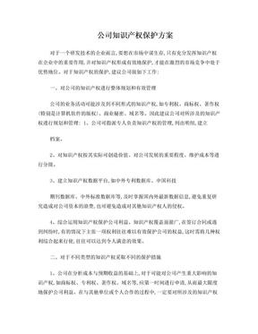 企业知识产权保护方案.doc