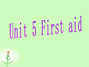2009届高考英语第一轮课本复习课件必修五 Unit 5 First Aid(人教新课标).ppt