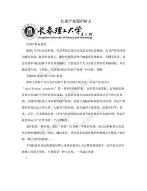 知识产权保护论文.doc