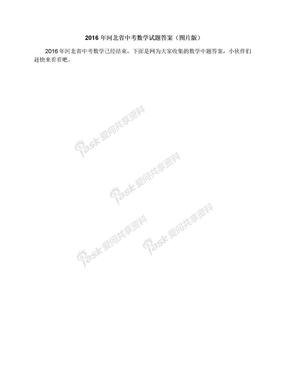 2016年河北省中考数学试题答案(图片版).docx