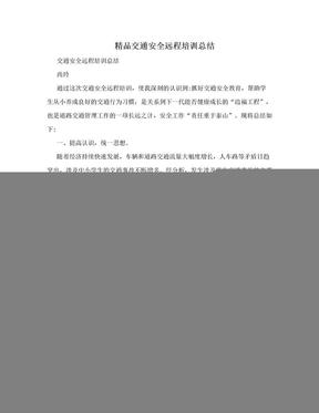精品交通安全远程培训总结.doc