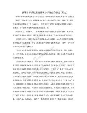 领导干部试用期满及领导干部综合鉴定(范文).doc