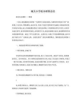城关小学校本研修总结报告.doc
