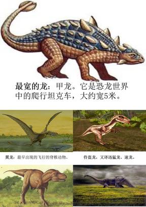 31恐龙的灭绝.ppt