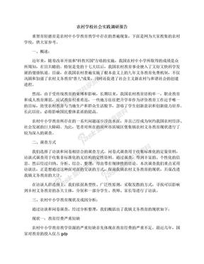 农村学校社会实践调研报告.docx