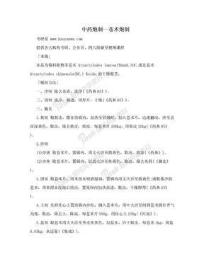 中药炮制—苍术炮制.doc