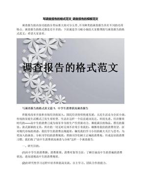 写调查报告的格式范文_调查报告的模板范文.docx