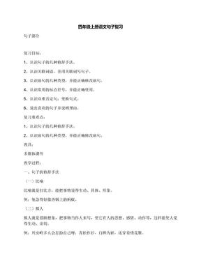 四年级上册语文句子复习.docx