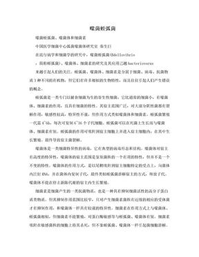 噬菌蛭弧菌.doc