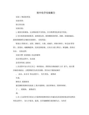 初中化学实验报告.doc