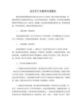 安全生产大检查自查报告.doc