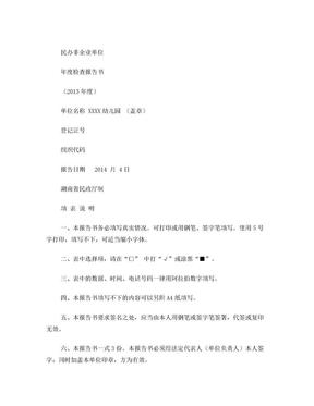 幼儿园 民办非企业单位年度检查报告.doc