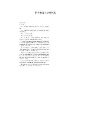 销售业务员管理制度.doc