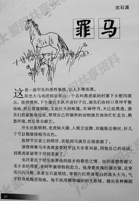 沈石溪 罪马.pdf