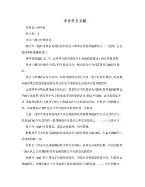 审计外文文献.doc