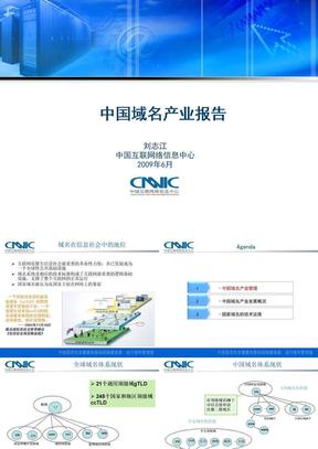 CNNIC中国域名产业报告PPT下载.ppt