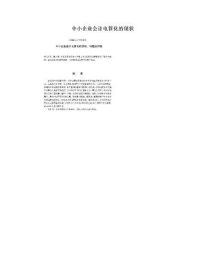 中小企业会计电算化的现状.doc
