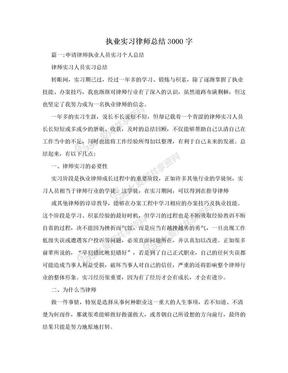执业实习律师总结3000字.doc